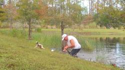 Elderly man frees pet dog from alligator's jaws using bare hands