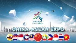 Asean officials, businessmen laud China-Asean Expo for deepening regional cooperation, free trade