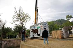 'D-Day' for Pakistan's lonely elephant as handlers prepare airlift to Cambodia