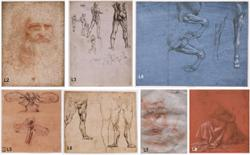 A world of DNA and bacteria found on Leonardo da Vinci drawings