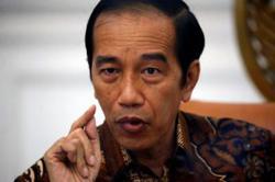 Jokowi: Brutal Sulawesi slayings beyond humanity