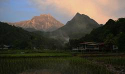 Kinabalu Park facing challenges of invasive species, farms operating without permits