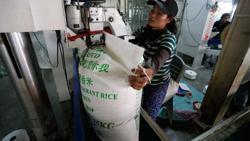 Cambodia rice exports pass 600,000 tonnes