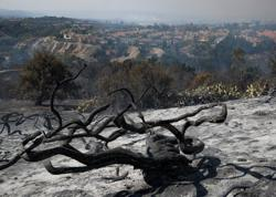 2020 likely world's second hottest, U.N. says