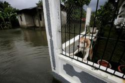 Storms that slammed Central America in 2020 just a preview, climate change experts say
