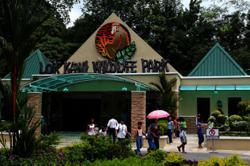 Lok Kawi wildlife park seeks funds for urgent upkeep