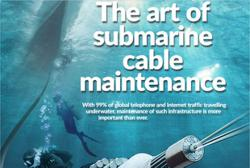 The art of submarine cable maintenance
