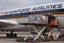 Singapore Air to prioritise room for vaccines, 7 flights ready
