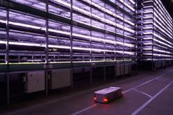 Giant vertical farm opens in Denmark