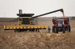 China-US farm ties are stronger and more tenuous than ever