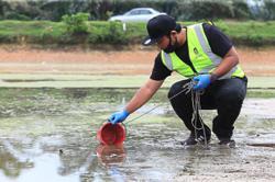 'Catfish farm may be the culprit'