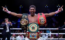 Boxing-Joshua says prepared to go to final bell against Pulev