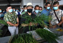 Muhyiddin launches low-carbon community programme in Muar village