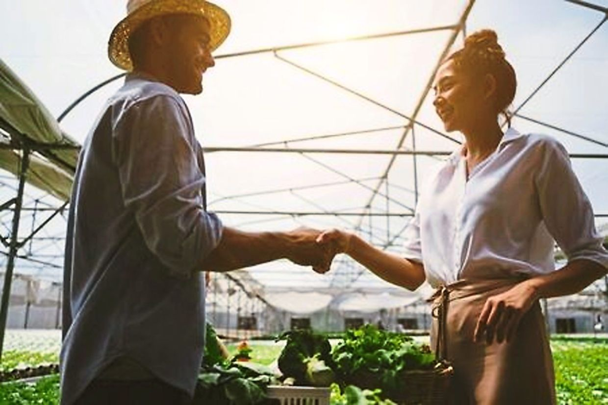 The Agrolink web portal enables suppliers and buyers to connect and grow together while making transactions more transparent, competitive, efficient and productive.