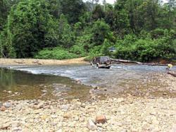 Conservation efforts recognised