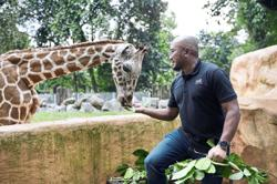 Ensuring welfare of two giraffes