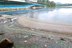 Get to bottom of lake pollution, DBKL told