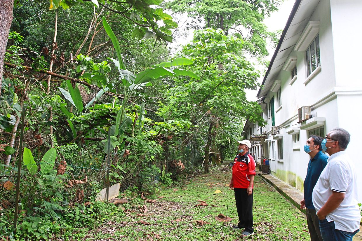 Kemensah Residents Committee chairman Mohd Fazil Abdullah (left) and residents association representatives at the site of a proposed development on a hillslope in Ampang Jaya, Selangor. —Filepic