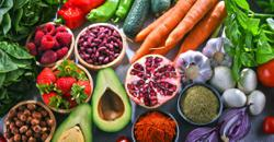 Essential Nutrients For A Solid Healthy Path Into 2021