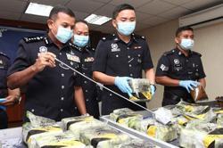RM1.1mil worth of seizures made in Johor drug bust