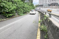 Foliage obstructing ramp will be cleared soon, says Litrak