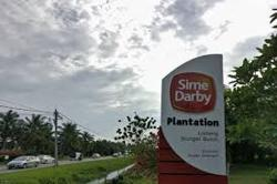 Sime Plantation slumps after US bans its palm oil imports
