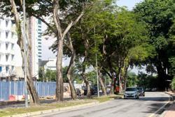 Jalan Universiti renamed to Jalan Prof Diraja Ungku Aziz