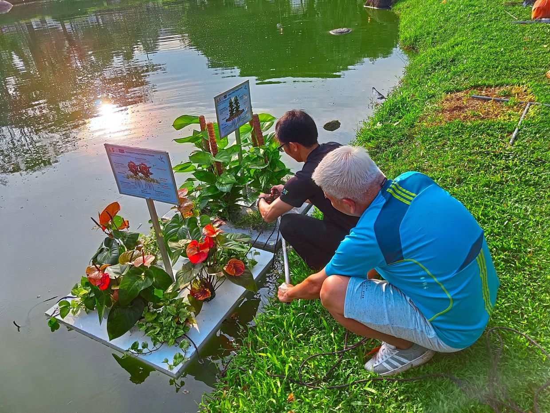 "UTAR's ""Ecological Floating Treatment Wetlands""."