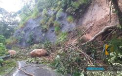 Police: 13 vehicles trapped by Fraser's Hill landslides, no injuries