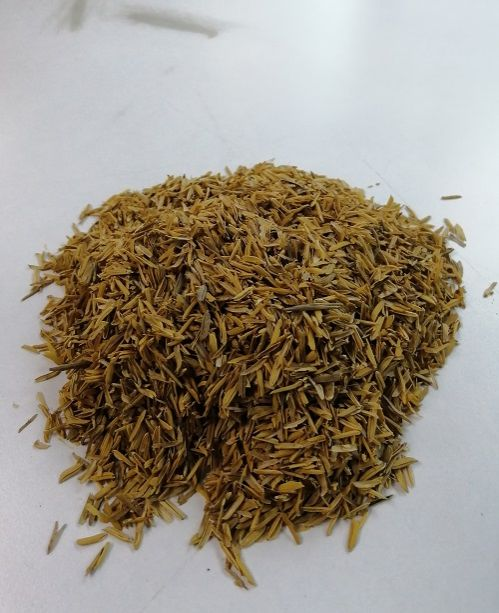 Rice husk is one of the sources of biomass.