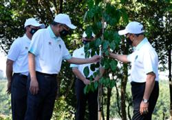 Muhyiddin launches 100 million tree-planting campaign