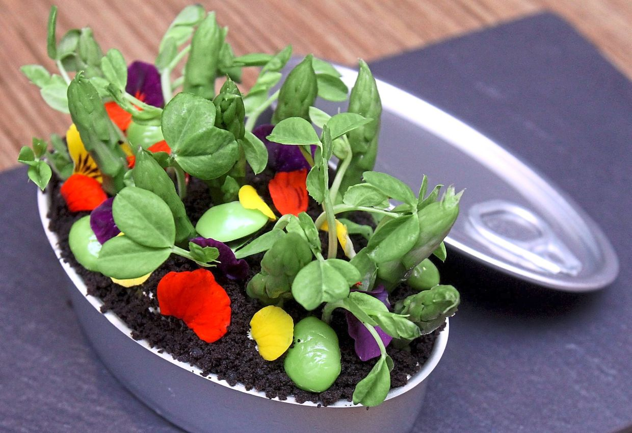 Microgreens can be sprinkled on any salad for that added crunch. Photo: Filepic