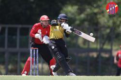 Plans to grow cricket via schools