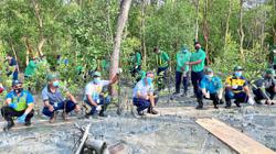 More mangrove saplings planted at forest reserve