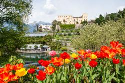 Over-the-top gardens are the new vacation spots