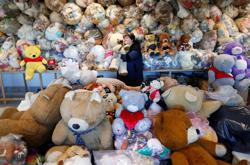 Wrapped in plastic, no picnic for Hungarian teddy bears asleep in pandemic