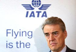 IATA reiterates call on flexible policies from governments on air travel