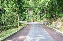 Bukit Kiara a haven for nature lovers