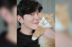 Korean actor Yun Kyun-sang on how he ended up adopting four cats