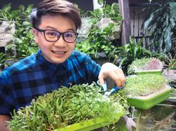 These Malaysians are growing vegetables on shoe racks and other small spaces