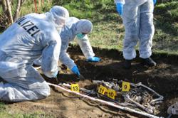 When archaeologists and police team up, you get plastic skeletons