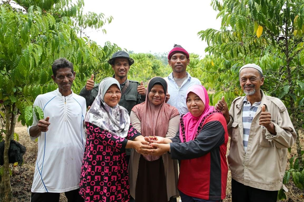 The NESCAFÉ Grown Respectfully programme has engaged with more than 100 farmers in Kedah to date.