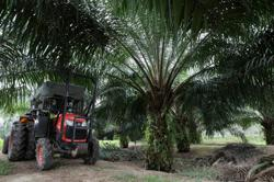 Malaysia takes WTO legal action against EU over palm biofuel curbs