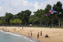 Singapore: Barbecue pits and camp sites in parks to reopen from Jan 20; 30 Covid-19 cases reported