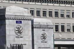 Malaysia initiates WTO dispute over EU palm oil measures