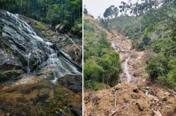 Tuan Ibrahim: Destruction at Segari Melintang Forest Reserve likely due to quarry