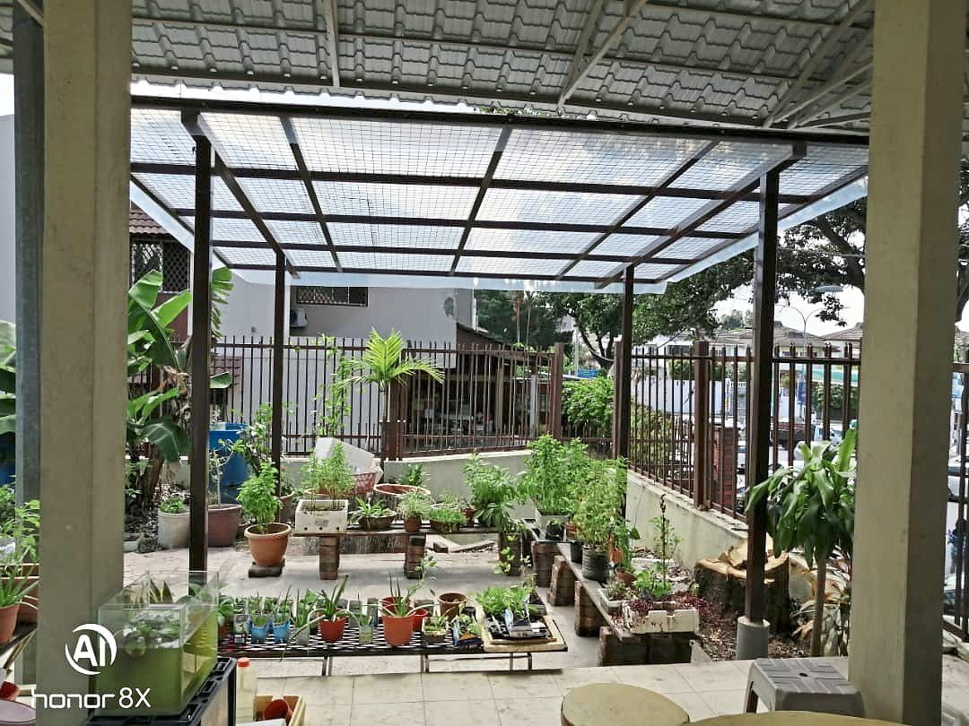 The urban farm at DJROA premises serves as an experimental farm to showcase various planting  methods and  a variety of vegetables  and herbs that residents can grow at home.
