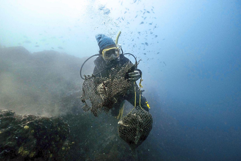 'Ghost nets' choking sea life