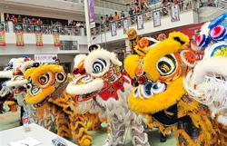 Lion and dragon dance troupes bracing for hard times