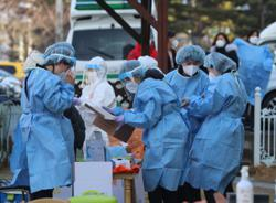 S. Korea: Covid-19 numbers falling but first pet infection case reported in South Gyeongsang Province